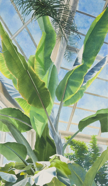 , 'Brooklyn Botanical Garden No. 1: Greenhouse Interior,' 1991, Childs Gallery