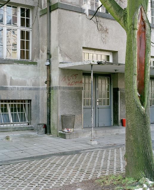 , 'Baum vor Gebäude,' 2010, FELD+HAUS