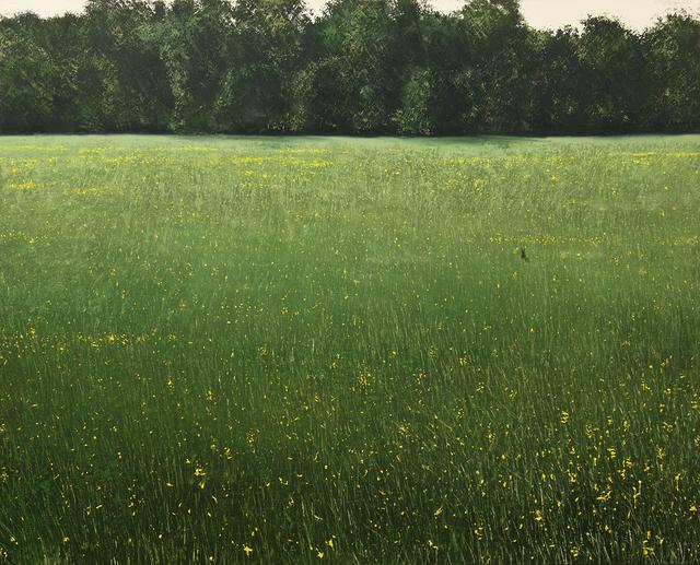 , 'Dans un champ colza après la récolte,' , Hugo Galerie