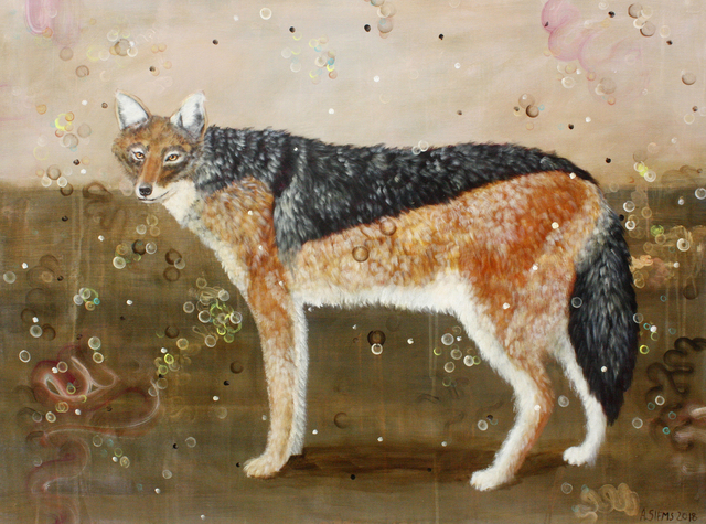 , 'Black-backed Jackal,' , Gail Severn Gallery