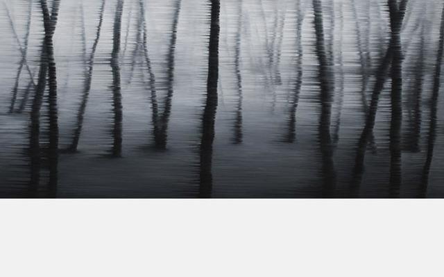 , 'La Foret,' 2017, Galerie Artpark Karlsruhe