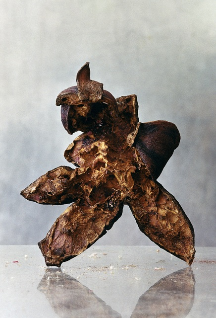 , 'Ur Herbarium, Granatäpplen (From Herbarium, Pomegranates),' 1999, CFHILL