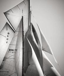 Sails IIX, Cote d'Azur