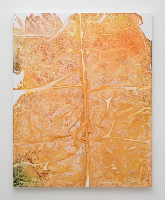 Rotem Reshef, 'Imprint#84', 2015, IAILA