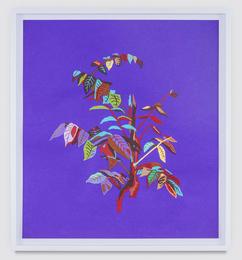 Leaves (Purple)