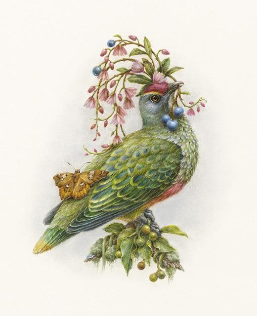 , 'Rose-crowned Fruit Dove,' 2018, Beinart Gallery