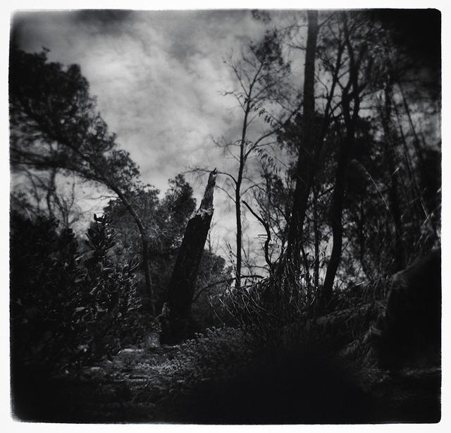 Carlos Barrantes, 'Sant Elm', Mind's eye- Galerie Adrian Bondy