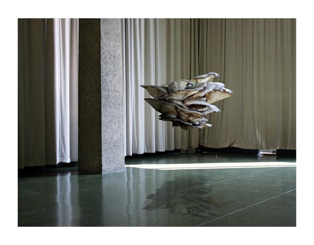, 'K.F.M. (Chicago),' 2009, Grieder Contemporary