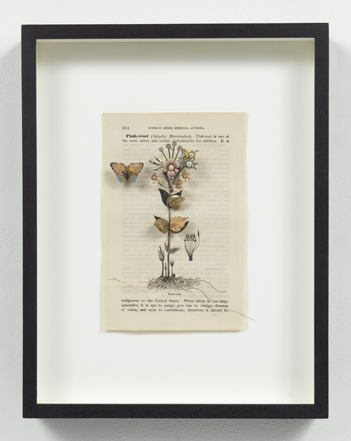 , 'Medicinal Garden Series: Pink Root,' 2005, Pavel Zoubok Gallery