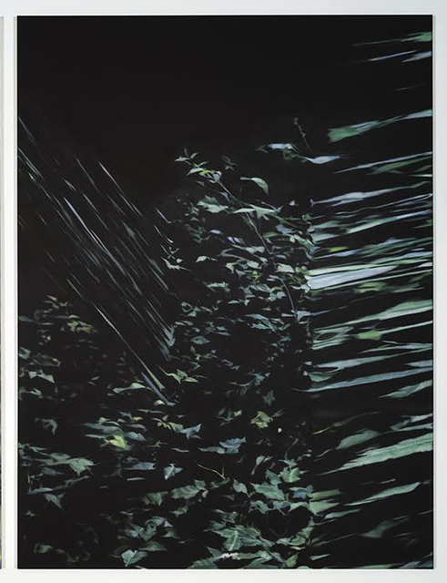 , 'Végétal,' 2016, Art Mûr