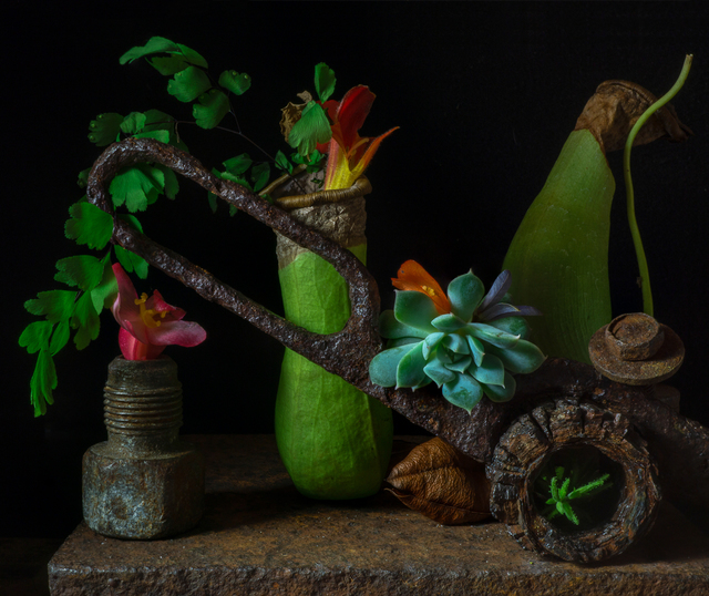 , 'Still Life with Pitcher Plants and Scissor,' , Soho Photo Gallery
