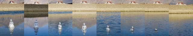 , '冰佛 Ice Buhhda - Lhasa River,' 2006, Shanghai Gallery of Art