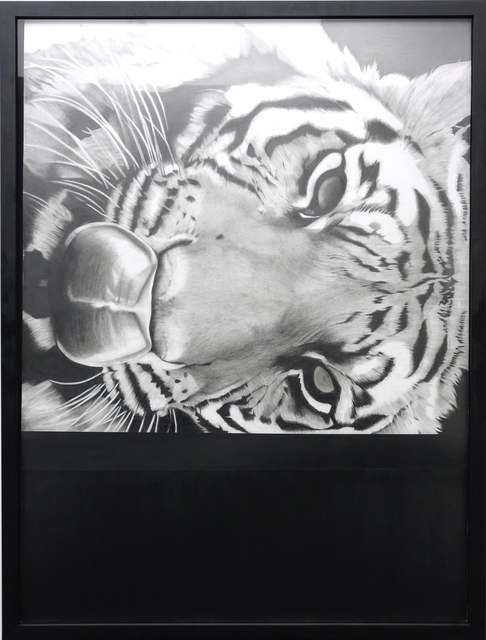 , 'Untitled (Tiger),' 2017, CLEAR EDITION & GALLERY