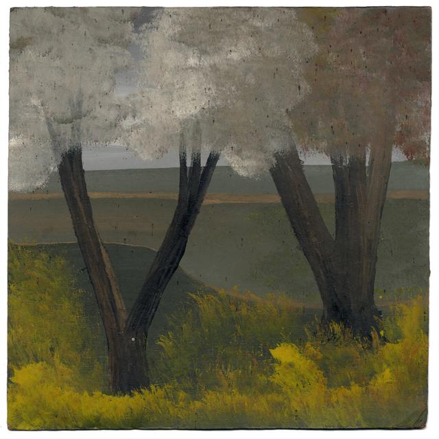 , 'Large Grey Tree,' , Ingleby Gallery