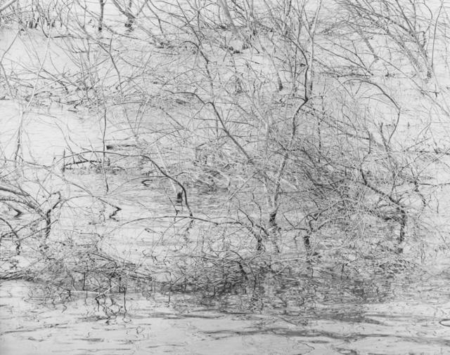, 'LS 231,' 2016, Gaain Gallery