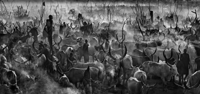 David Yarrow, 'Mankind 3', ca. 2014, Samuel Lynne Galleries