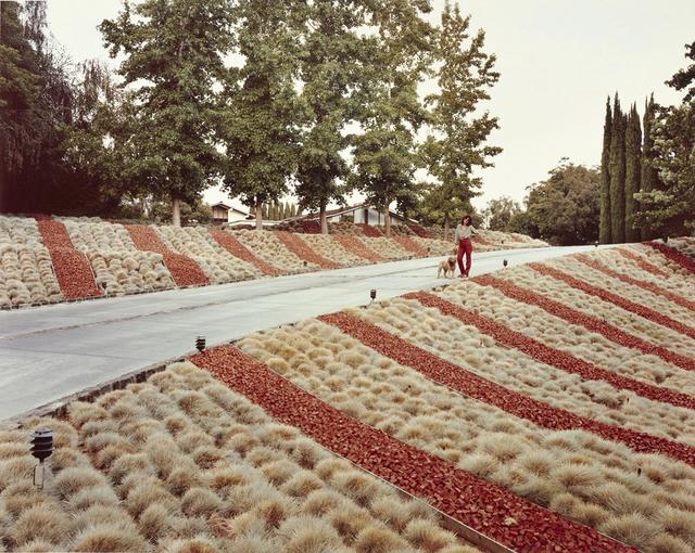 , 'Beverly Hills, California, May 1979,' 1979, Huxley-Parlour