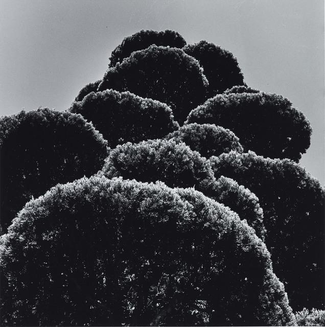 , 'Iga Mie, 1979,' , Benrido