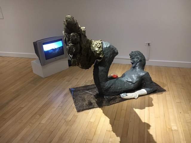 , 'Molted Shell of Sciapode Watching a Video of Sciapodae,' 2017, Bronx Museum of the Arts