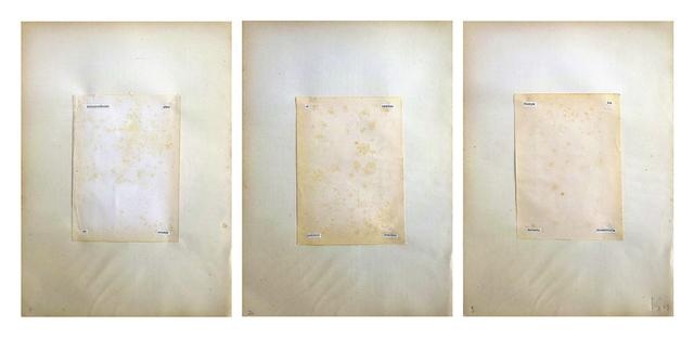 , 'Cuatro Condiciones,' 1973, RocioSantaCruz
