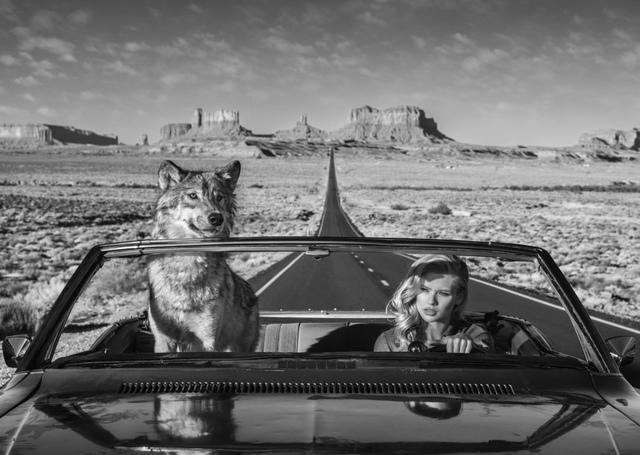 David Yarrow, 'Road Trip', ca. 2018, Photography, Archival Pigment Photograph, Samuel Lynne Galleries