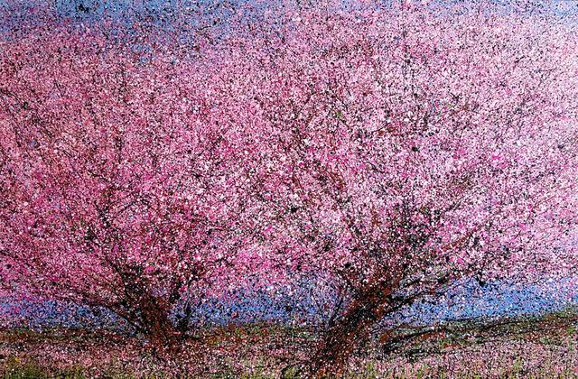 , 'Twin Cherries,' 2018, Rebecca Molayem Gallery