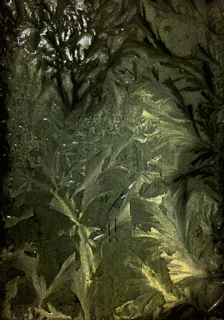 , 'Garden Path 01 園境 01,' 2015, Artrue Gallery