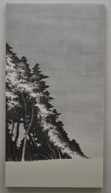 , 'the variant cave,' 2015, Kamiya Art