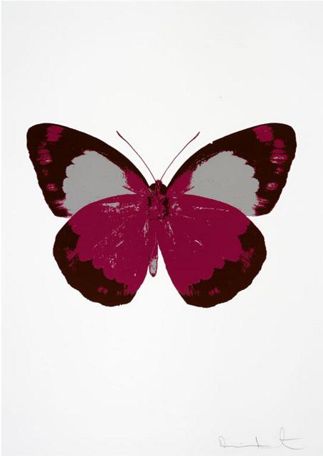 , 'The Souls II - Fuchsia Pink - Chocolate - Silver Gloss,' , Other Criteria