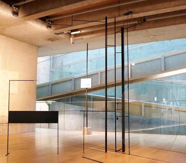 , 'Unprotected 0 Fig.120º,' 2015, Museo de Arte Contemporáneo de Buenos Aires