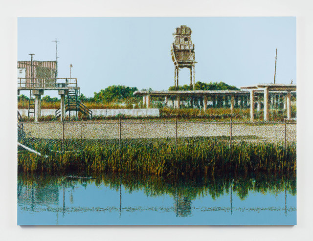 , 'Chevron Plant Ruin, Bayou La Loutre, near Yscloskey, Louisiana,' 2018-2019, Stephen Friedman Gallery