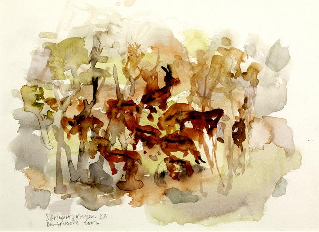 , 'Springbok I  Kruger SA,' 2007, Oliver Sears Gallery