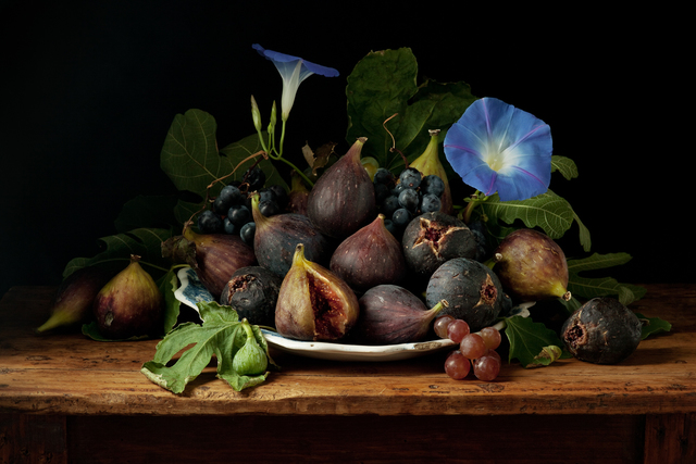 , 'Figs and Morning Glories, after G.G.,' 2010, Robert Klein Gallery
