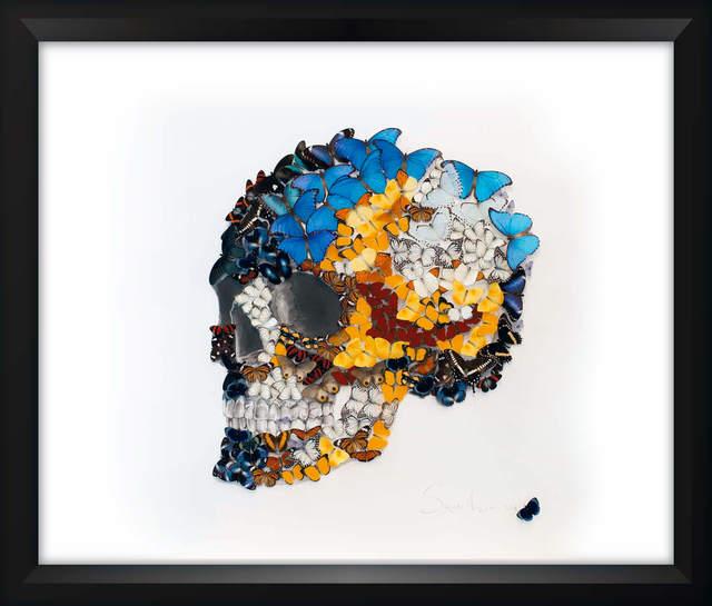 , 'Butterflies Skull 3,' 2016, Eden Fine Art