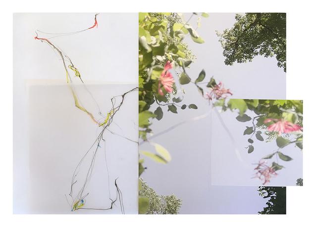 , 'Untitled ,' 2016, Yancey Richardson Gallery
