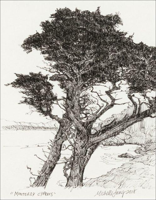 , 'Monterey Cypress ~ Monterey, CA,' 2018, The Guild of Boston Artists