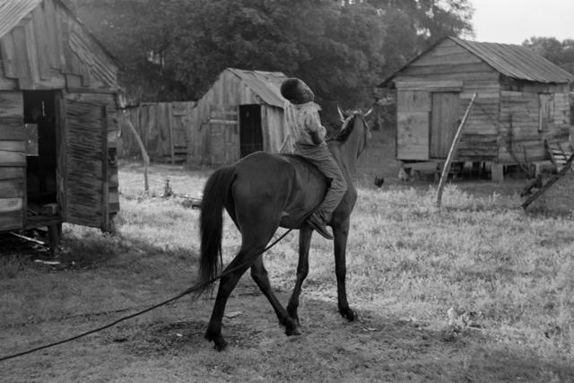 , 'Untitled, Island Boy, Daufuskie Island, South Carolina (boy on horse),' 1952, Robert Klein Gallery