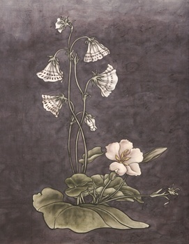 , 'These are still Flowers 1913-2013 No. 6,' 1913, Ink Studio