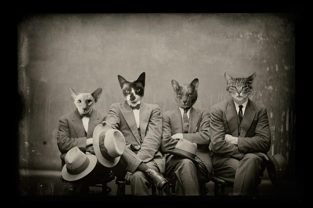 Mafia cats