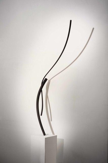 , 'Antera,' 2007, rosenfeld porcini