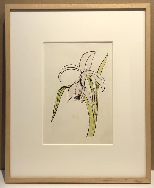 Andy Warhol, 'Still-Life (Flower)', ca. 1957, Woodward Gallery