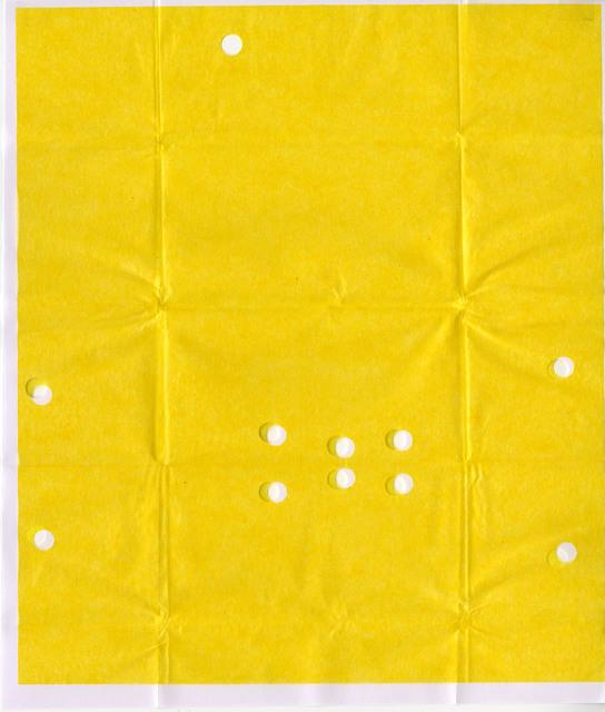 Olaf Nicolai, 'Diamond Parcel Paper (#A19)', 2019, Galerie EIGEN + ART