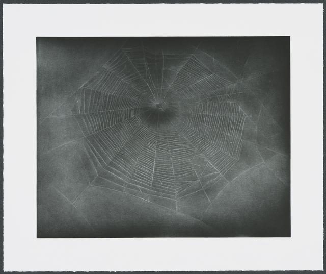 , 'Untitled (Web 3),' 2002, Gemini G.E.L. at Joni Moisant Weyl
