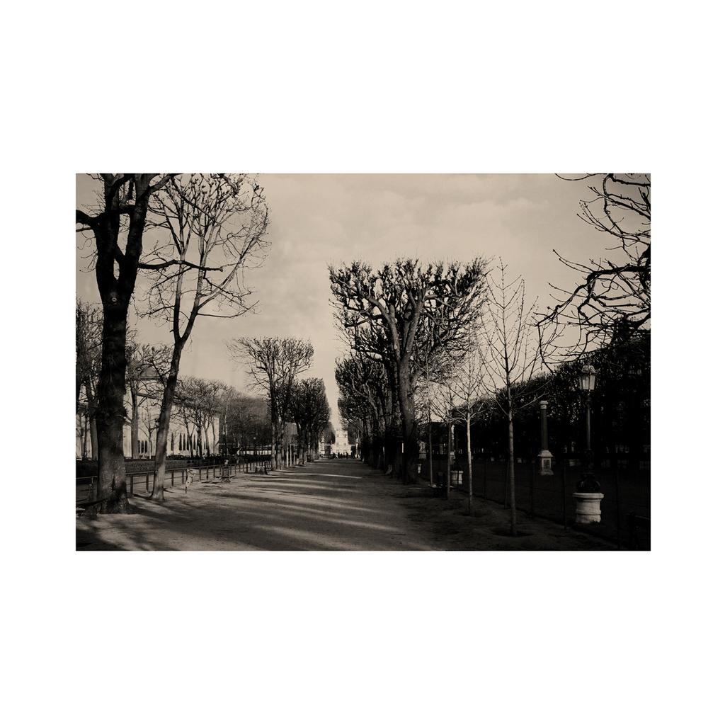 "Jack Vettriano Rare size 16/"" x 12/"" mounted print Original Sin I"