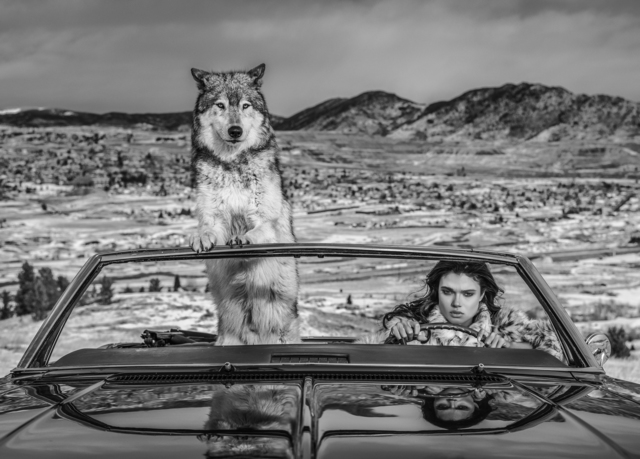 David Yarrow, 'The Richest Hill in the World', 2020, Photography, Archival Pigment Print, Samuel Lynne Galleries