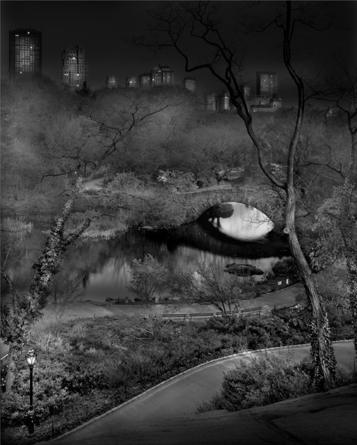 , 'Deep in A Dream - Central Park - Fading Away,' 2011, Holden Luntz Gallery