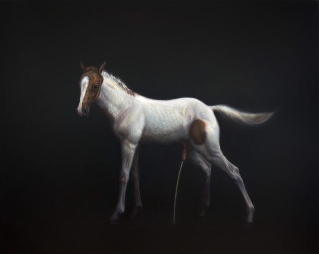 , 'horse(xx),' 2017, CFHILL