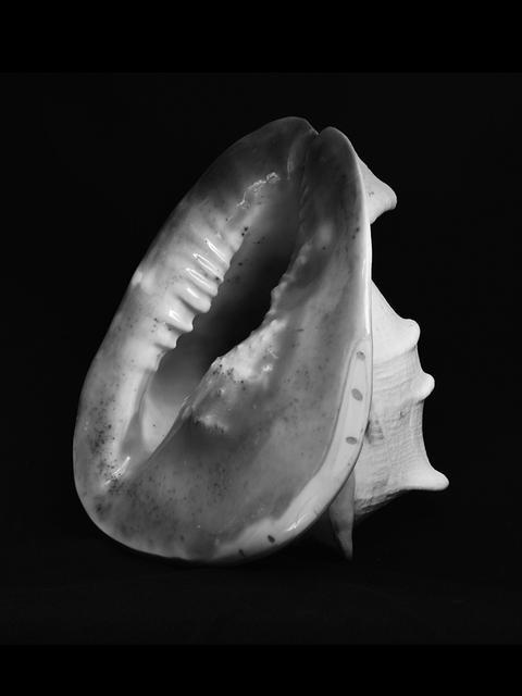 Esther Teichmann, 'Untitled', 2015, Galerie Les filles du calvaire