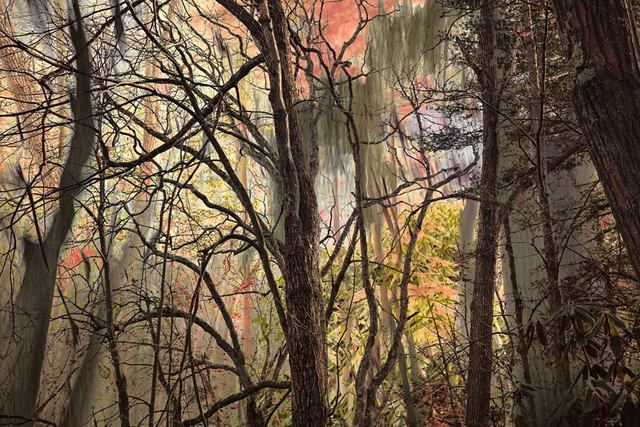 , 'Sleepy Hollow,' 2018, 555 Gallery