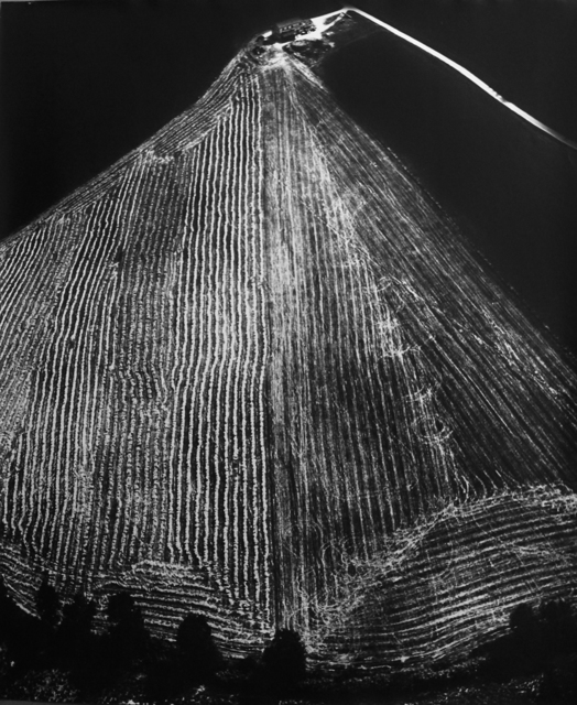 , 'Presa di coscienza sulla natura, années 80,' ca. 1980, Polka Galerie